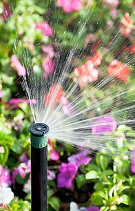 irrigation lawn sprinkler service